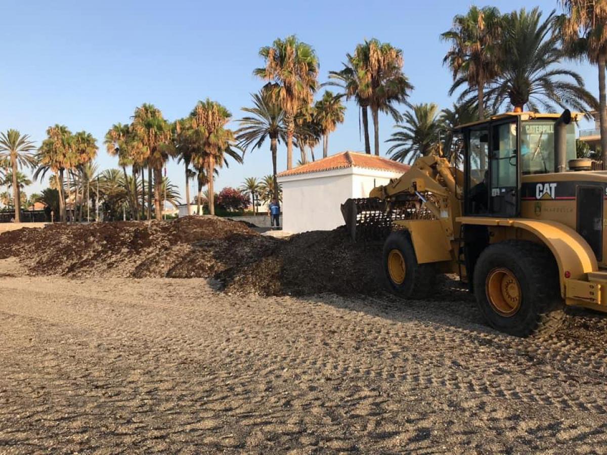 El Ayuntamiento retira en un mes más de 750.000 kilos de algas de la costa de Marbella