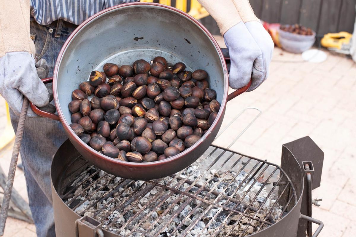Resultado de imagen de toston castañas